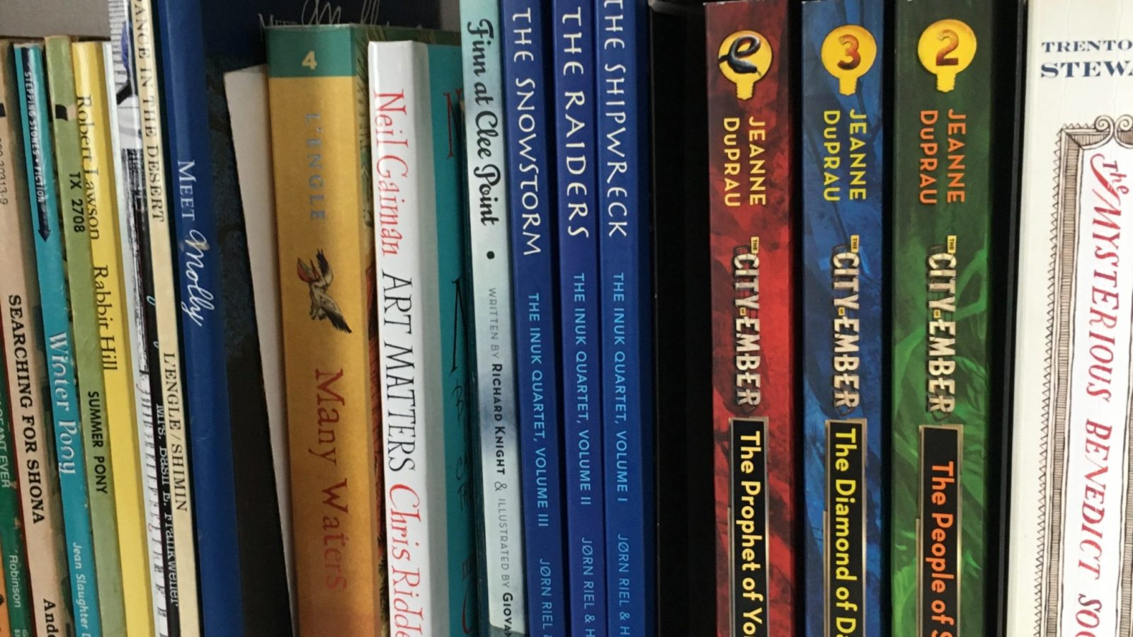 Chapter books for middle grades and young adult readers