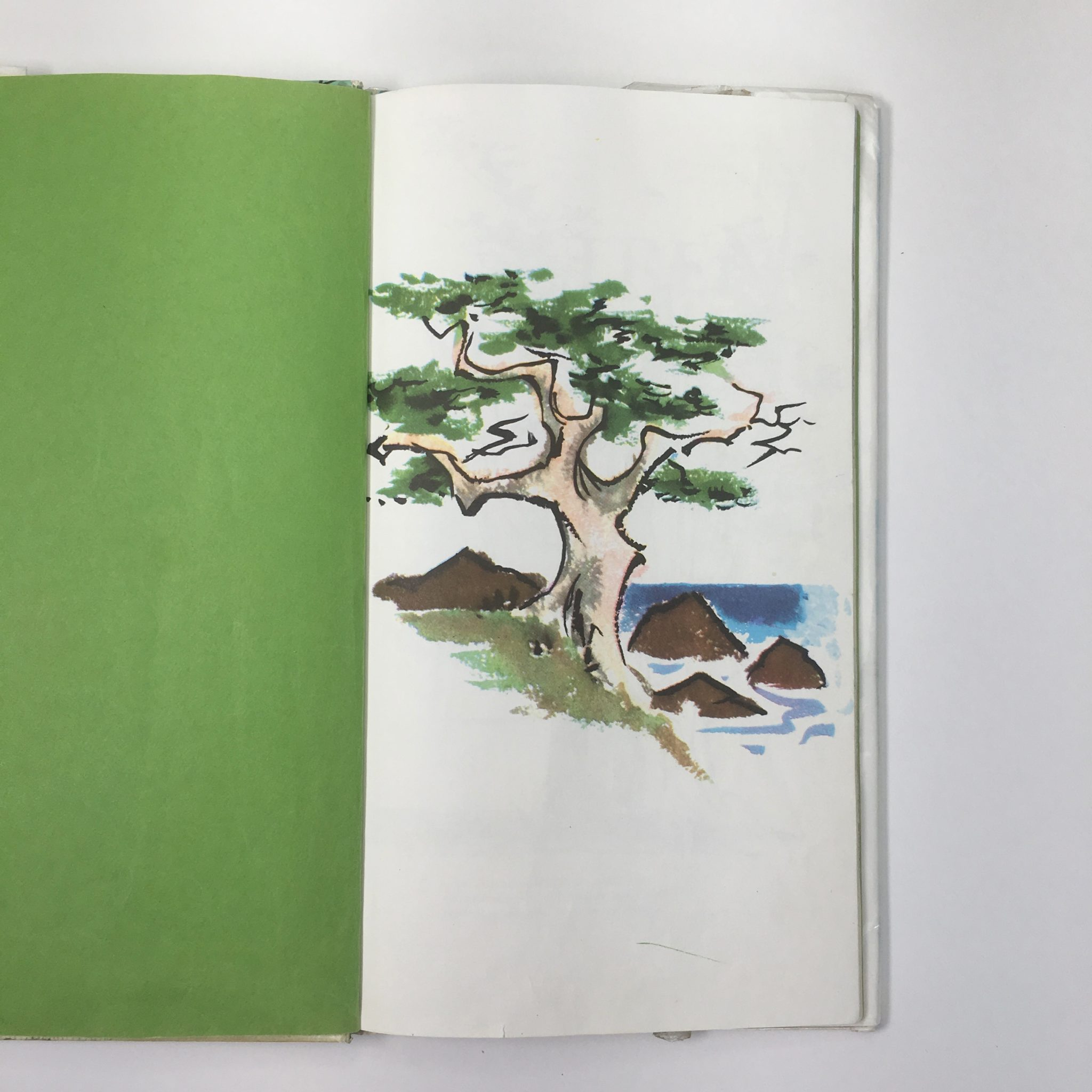 """Endpapers from """"A Tree is Nice"""""""